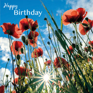 SM14196HB - Poppies and Sunburst (6 birthday cards)