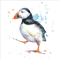 RT84949 - Puffin (6 blank cards)