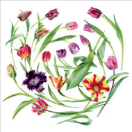 BS77017- Floral Swirl (6 blank cards)