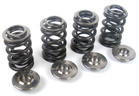 APE High Performance Racing Valve Spring Kit for Suzuki DRZ, LTZ, Kawasaki KLX, KFX, Arctic Cat DVX