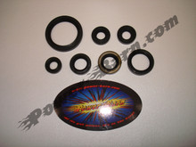 Vertex Lower End Seal Kit for Arctic Cat DVX400, Kawasaki KLX400 and KFX400, Suzuki DRZ400 and LTZ400