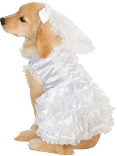 Married Marriage Wedding Bride Girl Dog Pet Costumes