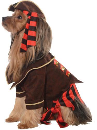 Pirate Boy Swashbuckler Jack Sparrow Dog Pet Costumes