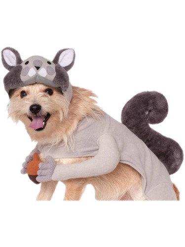 Classic Squirrel With Acorn Pet Dog Costumes