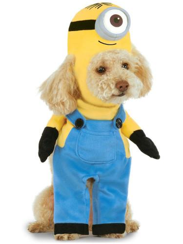 Universal Studios Despicable Me Minions Stuart For Pet Dog Costume