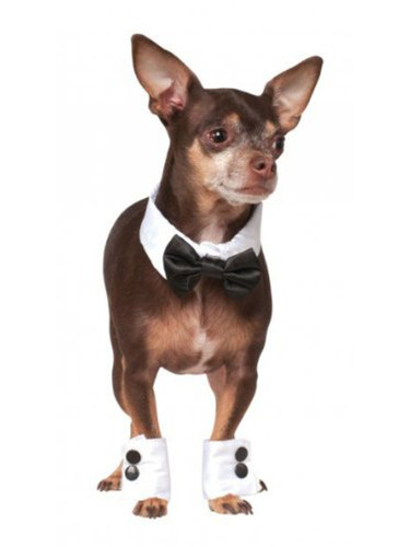Fancy Formal Cuffs And Bow Tie Pet Dog Costume Accessory