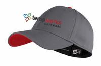 TempWorks Software New Era Interception Cap