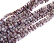 4mm Czech Opaque White Amethyst Tortoise FP Beads