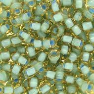 Japanese LT Turquoise Lined Light Topaz Glass Seed beads-28 grams