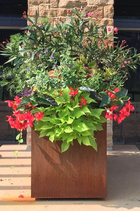 College Campus Corten Planter