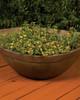 Majestic Planter - Small (GFRC in Trasacco finish)
