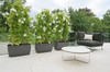 Osaka Low Planters (Fiber Cement in anthracite)