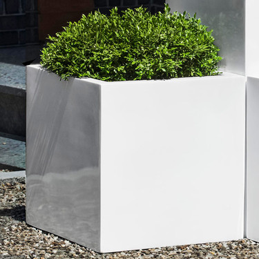 Farnley Gloss Planters (fiberglass in gloss white finish)