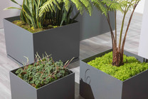 Box Planter Grouping - ALUMINUM - Charcoal Gray