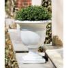 Beldon Urn (Glazed Terracotta in Antique White finish)