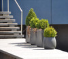 "12"" Twista Planter with Sumo Planter  - Material : Fiber Cement - Finish : Anthracite"