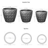 Netura Planter Specifications