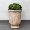 Vaucluse Urn (Terracotta in antico finish)