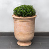 Vaucluse Urn (Terracotta in natural finish)
