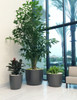 Kyoto Container Interior Planters - Material : Fiber Cement - Finish : Anthracite