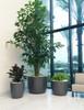 Kyoto Container Interior Planters - Material : Fiber Cement - Finish : Anthracite