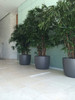 Kyoto Container Interior Wall - Material : Fiber Cement - Finish : Anthracite