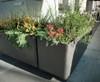 Delta Rectangular Container Corner Planter - Material : Fiber Cement - Finish : Anthracite