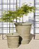 Urbino and Lucca Planters - Material : Cast Stone - Finish : Verde
