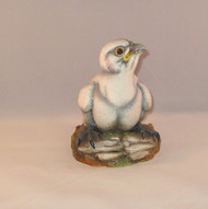 "Boehm ""Fledgling Peregrine Falcon"" 200-10"