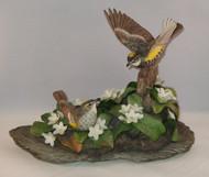 Myrtle Warblers 400-28C