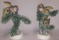 "Dorothy Doughty ""Golden Crowned Kinglets"" (Pair)"