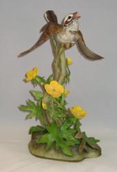"Boehm ""Lark Sparrow"" 400-35"