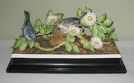 Cerulean Warblers 424