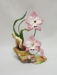 Pink Orchids 30113
