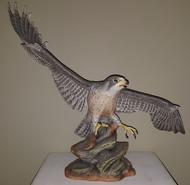 """Boehm """"Peregrine Falcon Soaring"""" 100-50"""