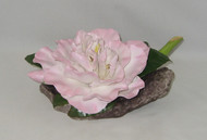 "Boehm ""Julia Hamiter Camellia"" 300-61"