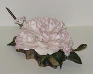 """Boehm """"Debutante Camellia With Viburnum"""" 3008"""