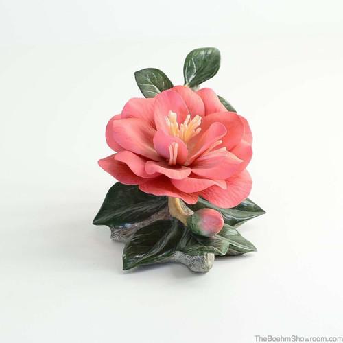 Boehm Masse Lane Camellia Hallmark F504