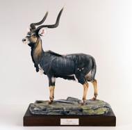 """Boehm """"Nyala Antelope"""" 5001"""