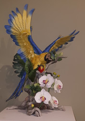 "Boehm ""Macaw In Paradise"" 40566 - $6,800.00"