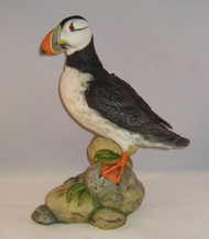 Atlantic Puffin 40376