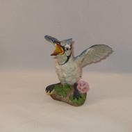Fledgling Blue Jay 400-77