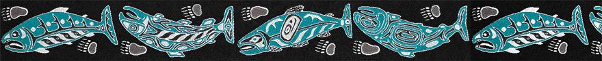 salmon-teal-880-x-90.jpg