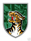 STICKER U S ARMY UNIT Vietnam - CIDG Strike Force