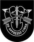 STICKER U S ARMY FLASH SPECIAL FORCES CREST