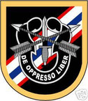 STICKER U S ARMY FLASH  46TH CO SPECIAL FORCES
