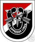 STICKER U S ARMY FLASH   6TH SPECIAL FORCES GROUP
