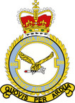 STICKER British Crest - 659 SQN - Army Air Corps (AAC)