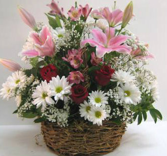 Stargazer and Rose Basket