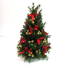 Traditions Boxwood Tree (Classic)